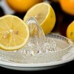 lemon squeezer and sliced lemons
